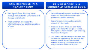 Stress increase the sensation of pain