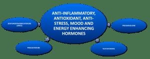 Hormones that relieve stress.
