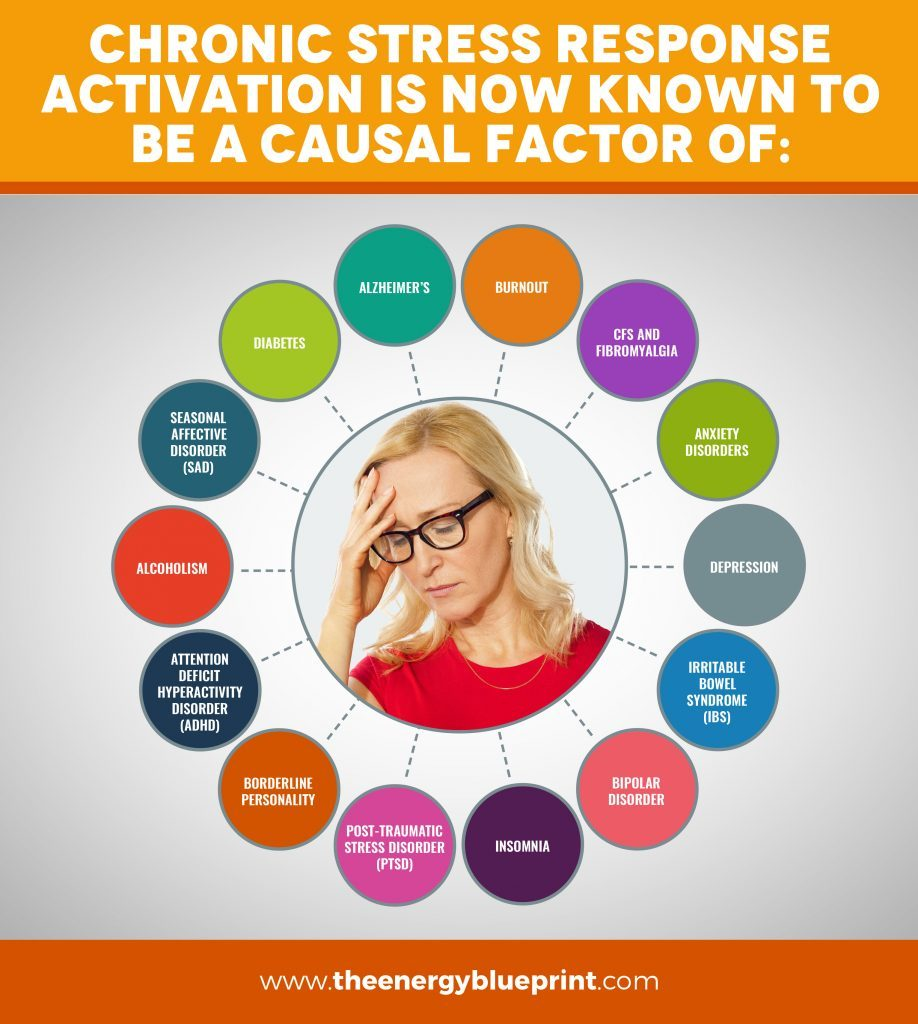 Infographic of what chronic stress response activation is a kown factor of │Why Stress Causes Fatigue And How To Overcome Stress, www.theenergyblueprint.com