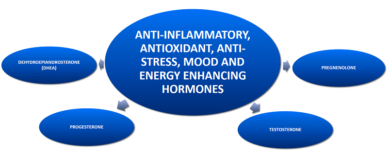 Stress Causes Fatigue By Lowering Sex Hormones │Why Stress Causes Fatigue And How To Overcome Stress, www.theenergyblueprint.com