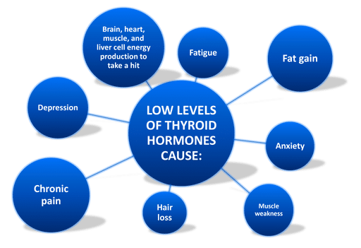 Infocraphic of what health issues low thyroid hormones cause │ Why Stress Causes Fatigue And How To Overcome Stress, www.theenergyblueprint.com