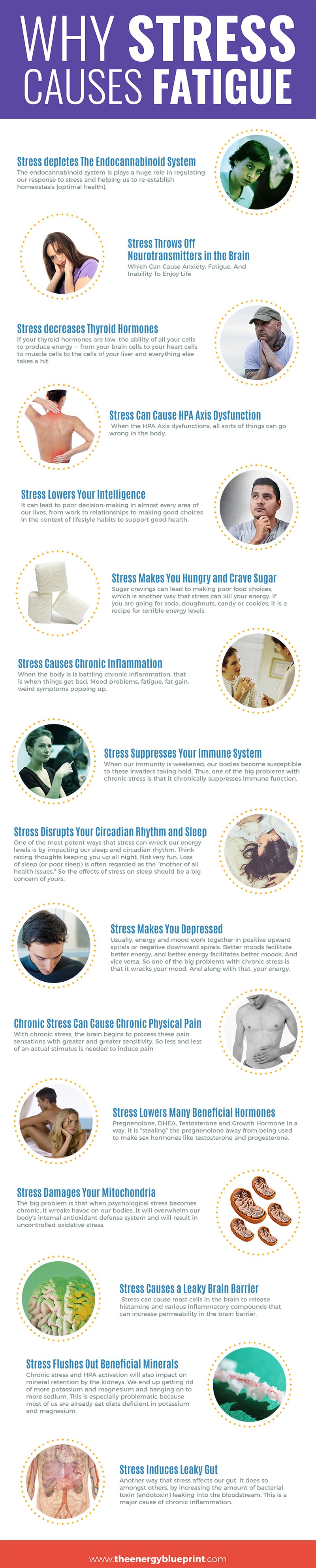 │Why Stress Causes Fatigue And How To Overcome Stress, www.theenergyblueprint.com