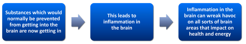 Stress causes fatigue by inducing a leaky brain barrier │Why Stress Causes Fatigue And How To Overcome Stress, www.theenergyblueprint.com