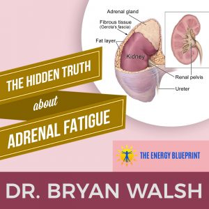Dr Bryan Walsh – The Hidden Truth About Adrenal Fatigue