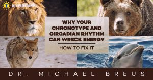 Why Your Chronotype and Circadian Rhythm Can Wreck Energy  – How to Fix It with Dr. Michael Breus