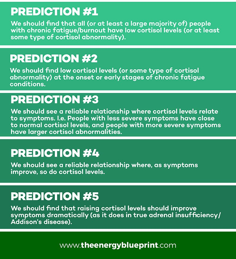 Adrenal Fatigue Predictions, Is Adrenal Fatigue Real, theenergyblueprint.com
