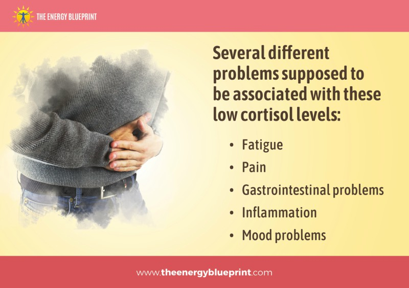 Several Different Problems supposed to be associated with these low cortisol levels │ Is adrenal fatigue real, theenergyblueprint.com