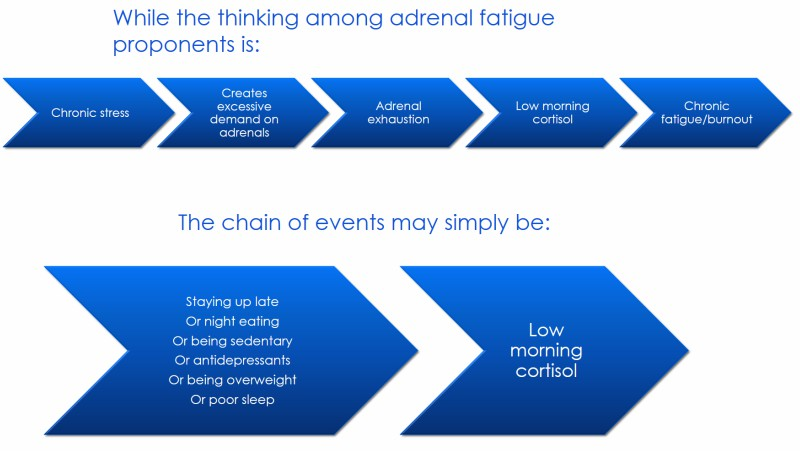 Infographic │ Is adrenal fatigue real, theenergyblueprint.com