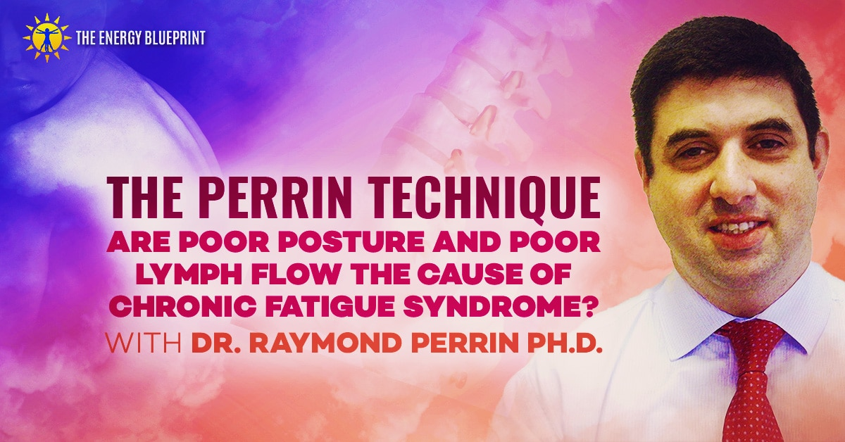 The Perrin Technique cover image, theenergyblueprint.com