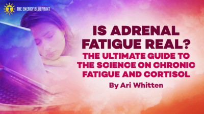 is adrenal fatigue real │ how to overcome fatigue │ how to increase mitochondria, theenergyblueprint.com