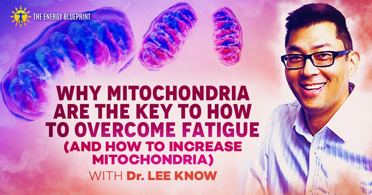 Why Mitochondria Are The Key To How To Overcome Fatigue (And How To Increase Mitochondria) with Dr. Lee Know, theenergyblueprint.com