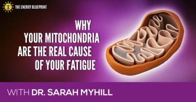 mitochondria and fatigue │ dr.Sarah Myhill │ How to overcome fatigue │How to increase Mitochondria, theenergyblueprint.com