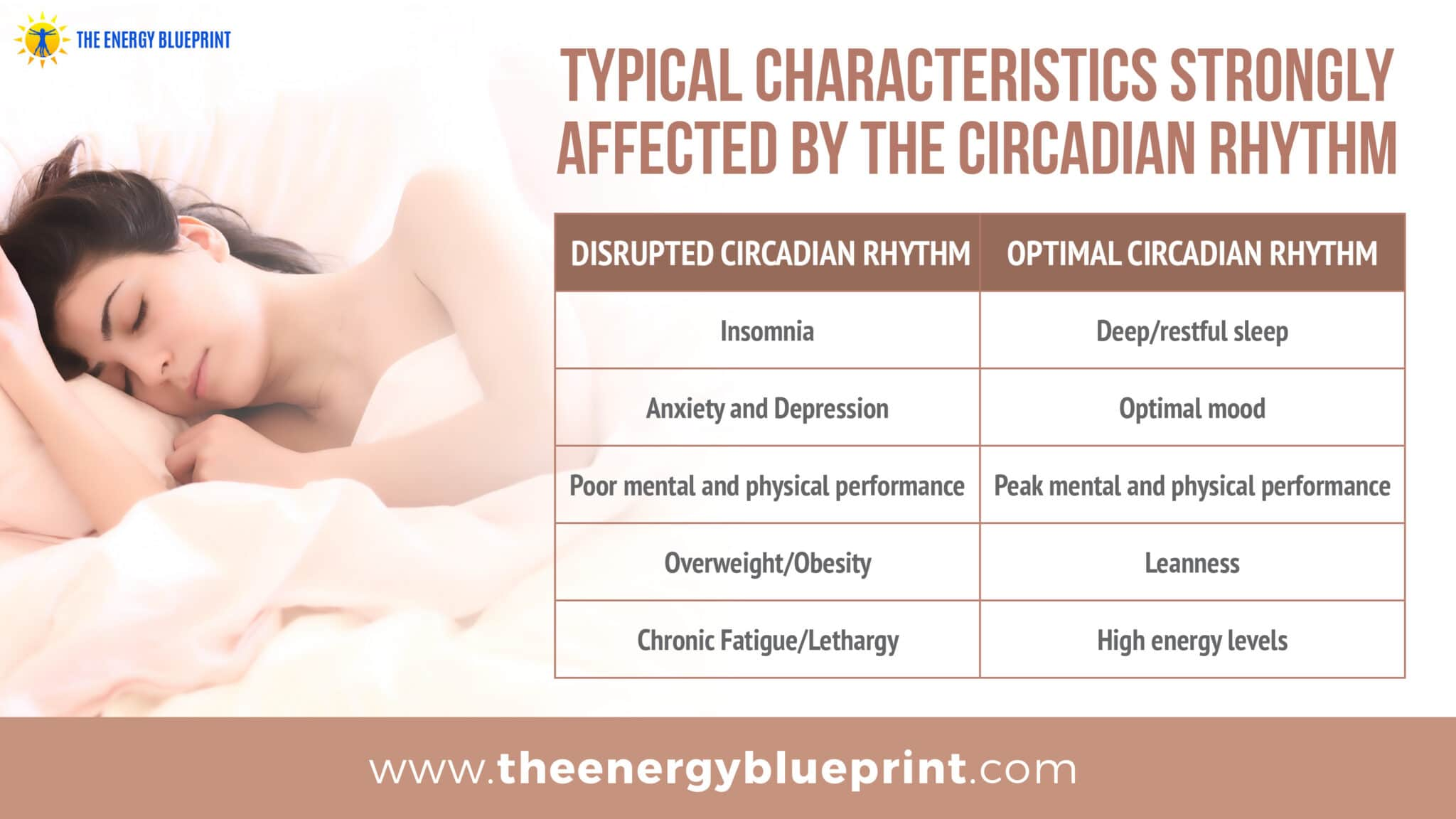 typical characteristics strongly affected by the circadian rhythm │ why am I so tired, theenergyblueprint.com