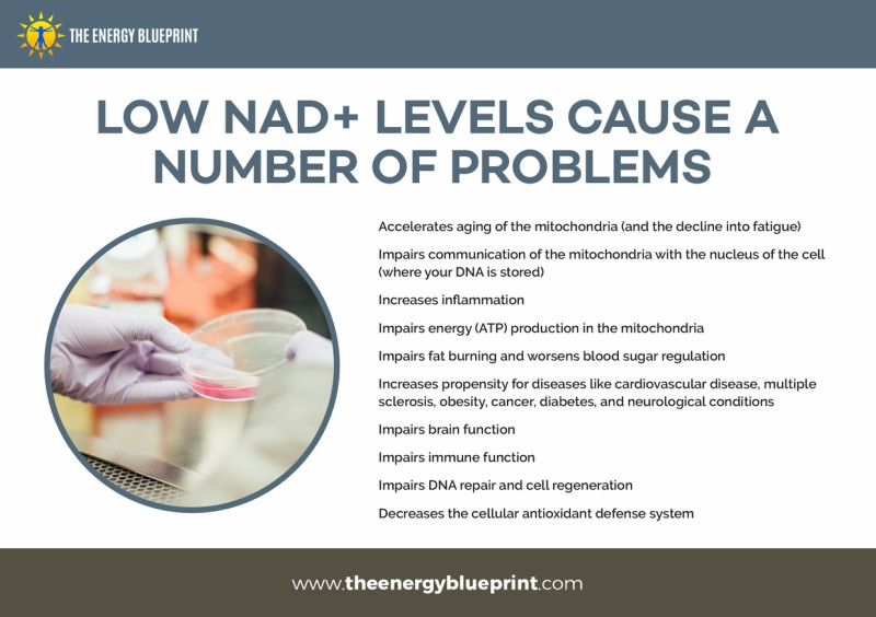 Low NAD+ Levels Cause A Number of Problems - Why Am I So Tired, theenergyblueprint.com