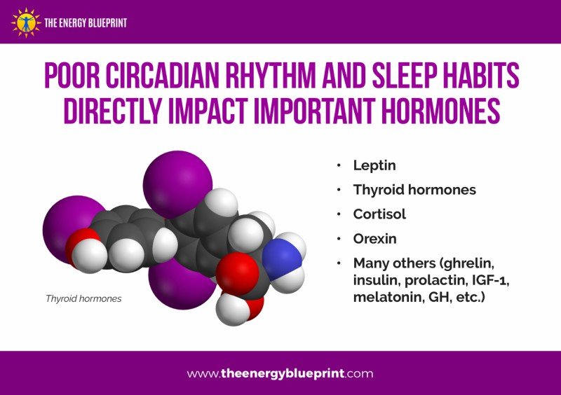 Poor Circadian Rhythm and Sleep Habits Directly Impact Importnat Hormones - Why am I so tired, theenergyblueprint.com