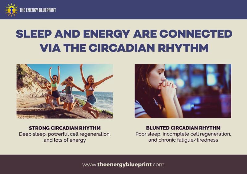 Sleep And Energy Are Connected Via The Circadian Rhythm - Why am I so tired, theenergyblueprint.com