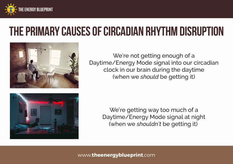 The primary causes of circadian rhythm disruption - Why am I so tired, theenergyblueprint.com