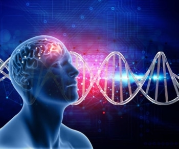 Changing Patterns of Brain Activity - Music therapy