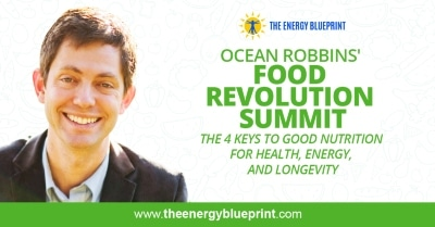 Ocean Robbins Food Revolution Summit │ The 4 Keys to Good Nutrition For Health, Energy, and Longevity │ Definition of health │ healthcare system, theenergyblueprint.com