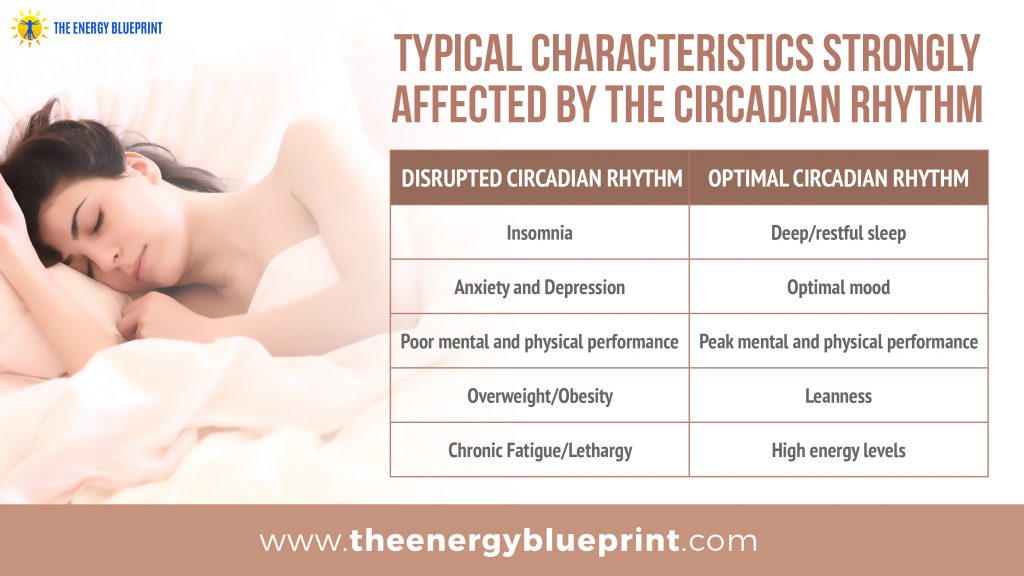 typical characteristics strongly affected by the circadian rhythm │ Blue Light Blocking glasses