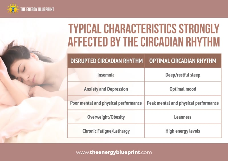 typical characteristics strongly affected by the circadian rhythm │ Blue Blockers │Best Blue Light Blocking Glasses│Blue Light Glasses, theenergyblueprint.com
