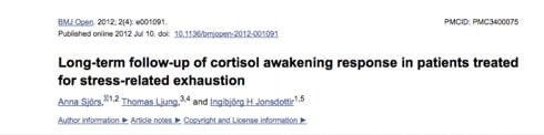 "Low Term follow up of cortisol awakening response in patients treated for stress-related exhaustion | The Truth About ""Adrenal Fatigue"" - The REAL Causes Of Low Cortisol Levels and How To Fix It, www.theenergyblueprint.com"