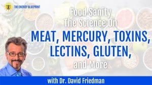Food Sanity   The Science On Meat, Mercury, Toxins, Lectins, Gluten, and More with Dr. David Friedman
