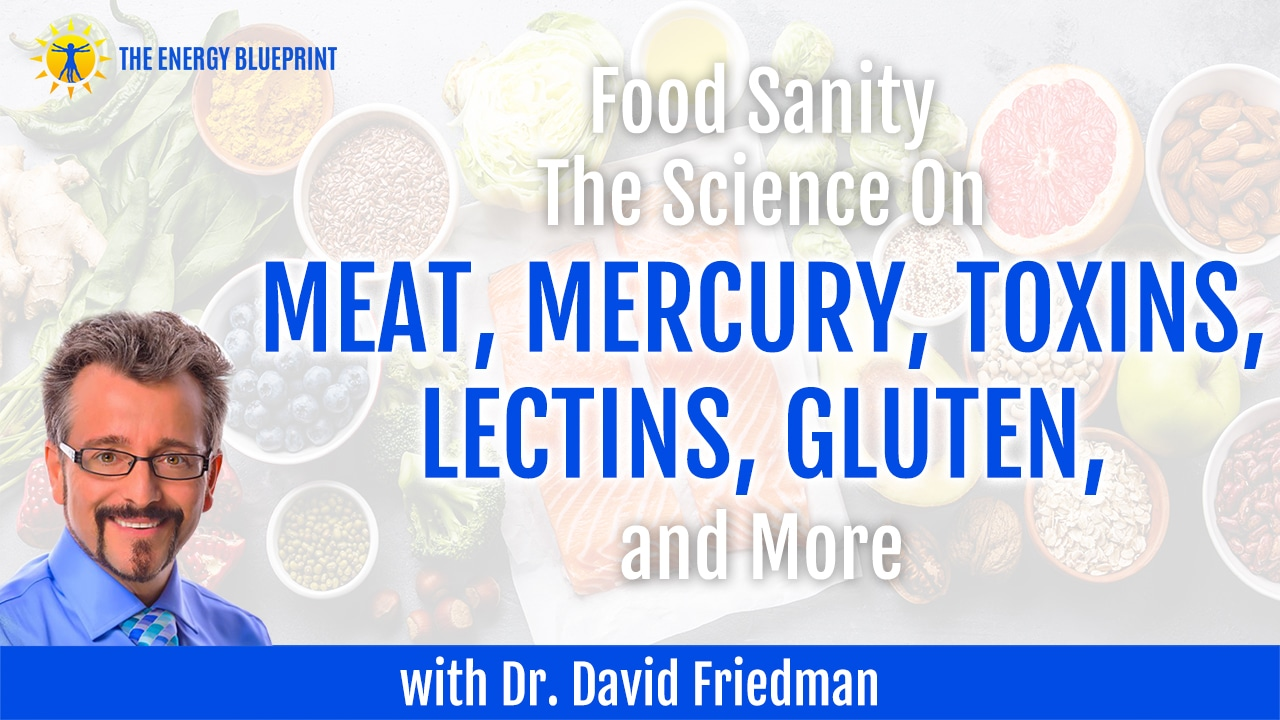 Food Sanity | The Science On Meat, Mercury, Toxins, Lectins, Gluten, and More with Dr. David Friedman