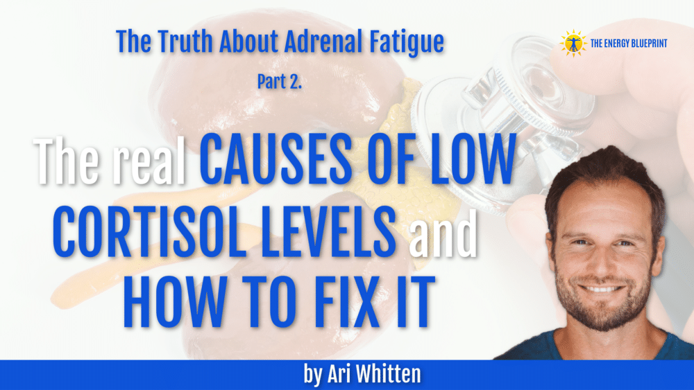 The REAL Causes Of Low Cortisol Levels and How To Fix It