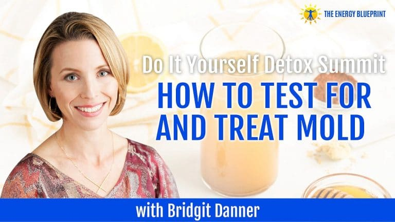 Detox Summit How to test for mold how to treat for mold Bridgit Danner