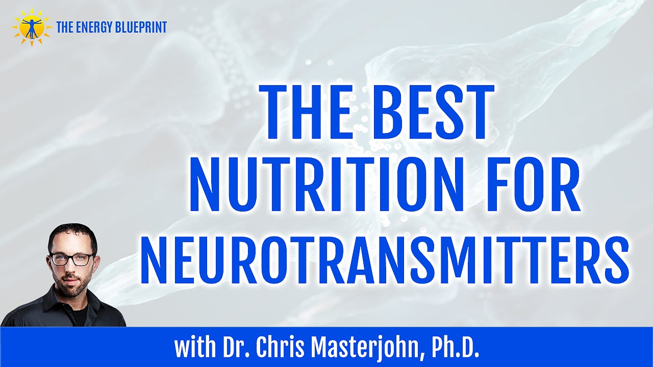 THe best nutrition for neurotransmitters New
