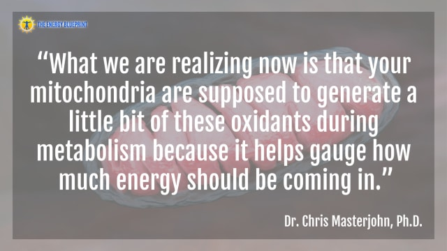 """What we are realizing now is that your mitochondria are supposed to generate a little bit of these oxidants during metabolism because it helps gauge how much energy should be coming in.""- Dr. Chris Masterjohn"