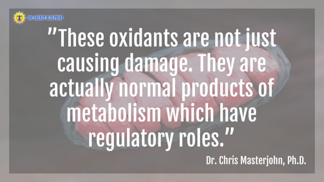 """""""These oxidants are not just causing damage. They are actually normal products of metabolism which have regulatory roles.""""- Dr. Chris Masterjohn"""