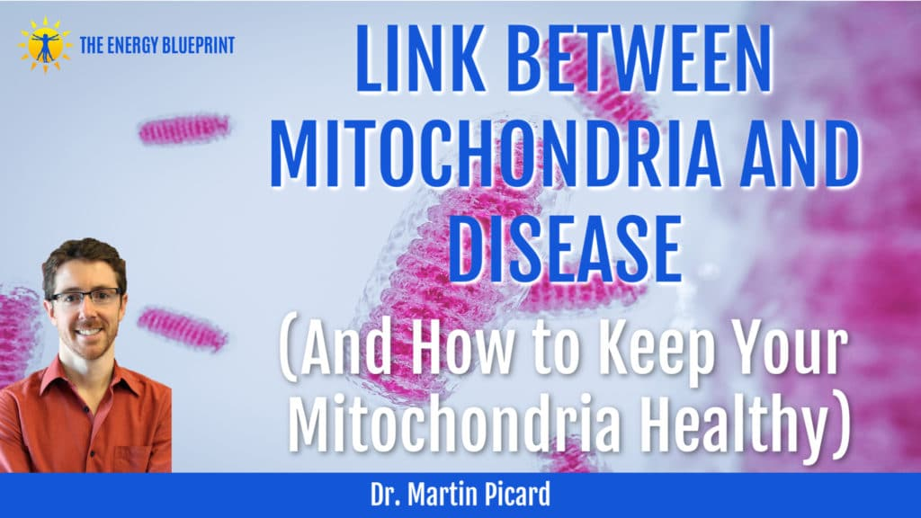 Dr. Martin Picard on LINK BETWEEN MITOCHONDRIA AND DISEASE (And How to Keep Your Mitochondria Healthy)