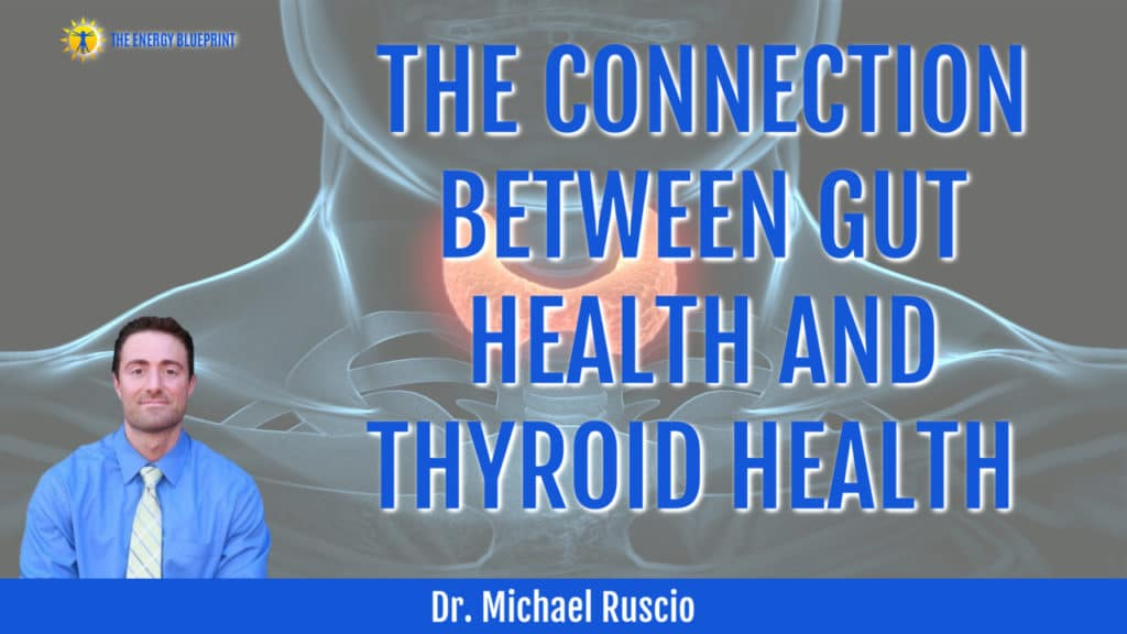 Dr. Michael Ruscio on The Connection Between Gut Health and Thyroid Health