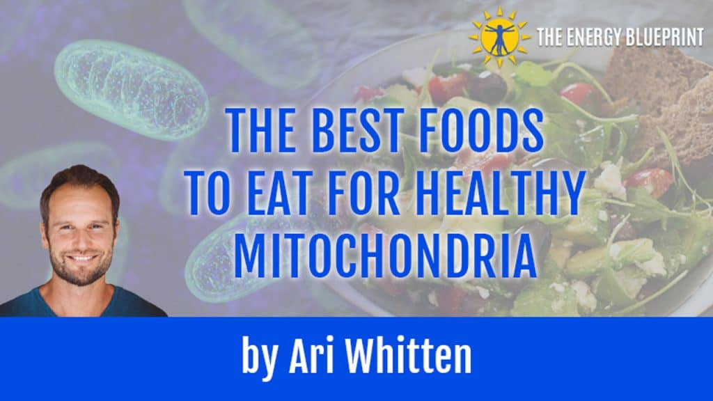 Healthy_Mitochondria Best Food
