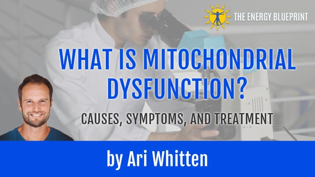 What_is_Mitochondrial_Dysfunction